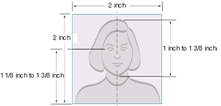 US Passport Photos - Requirements Template Image